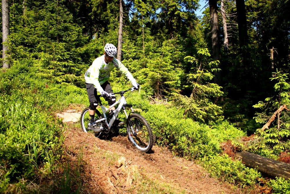 braunlage-bikepark1(c)btmg.jpg