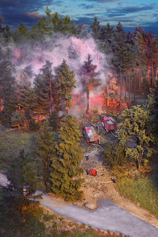 Waldbrand im Schienenbereich