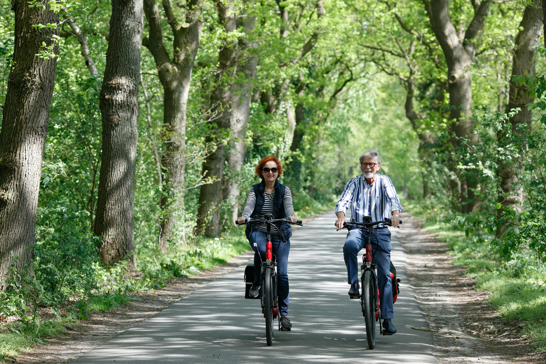 Geführte Erlebnisradtouren - Die Schulen der Bäume