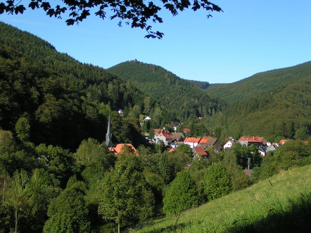 Harz singlereisen