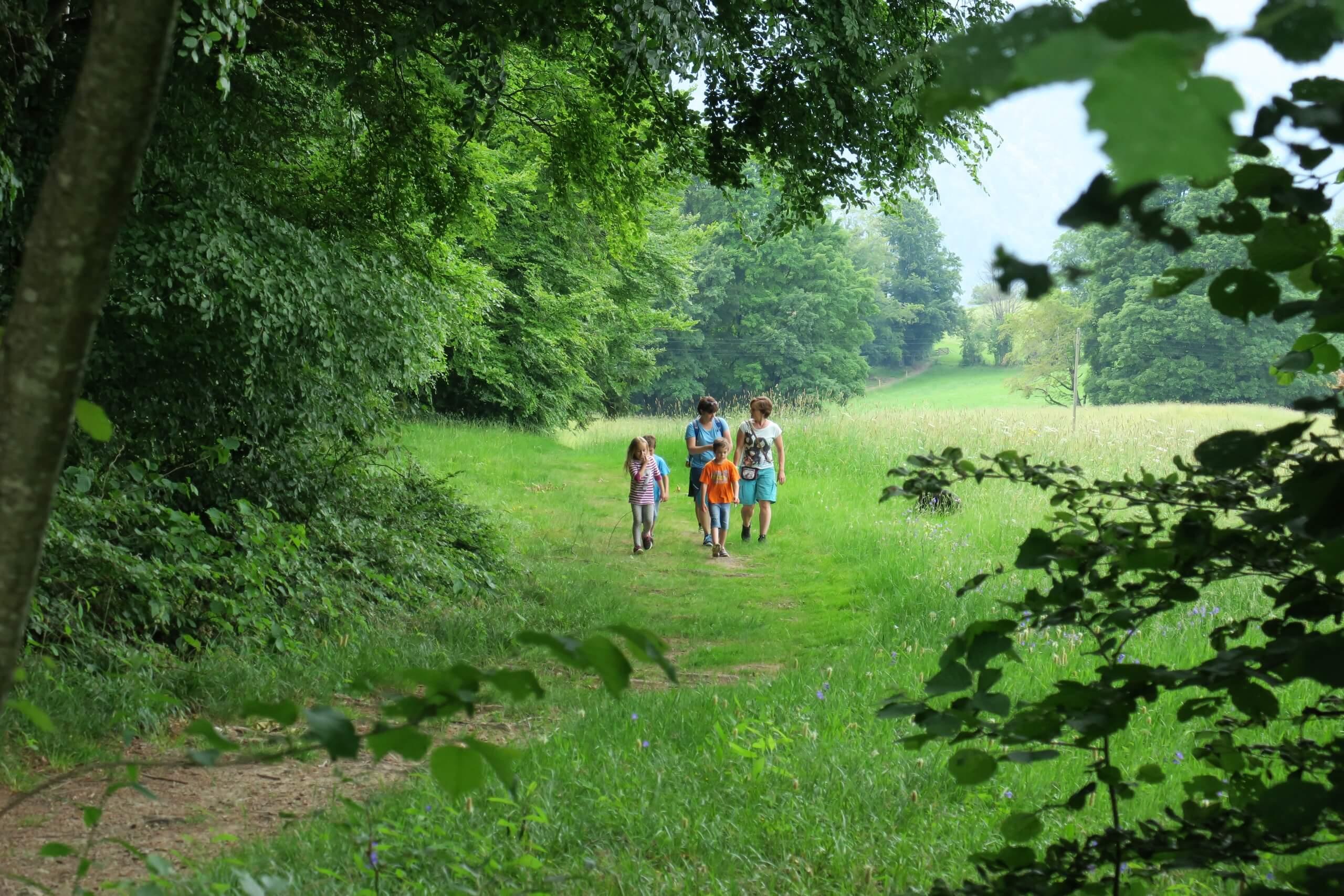 aeschi-schatzsuche-trail-wald-felder-sommer-spuren