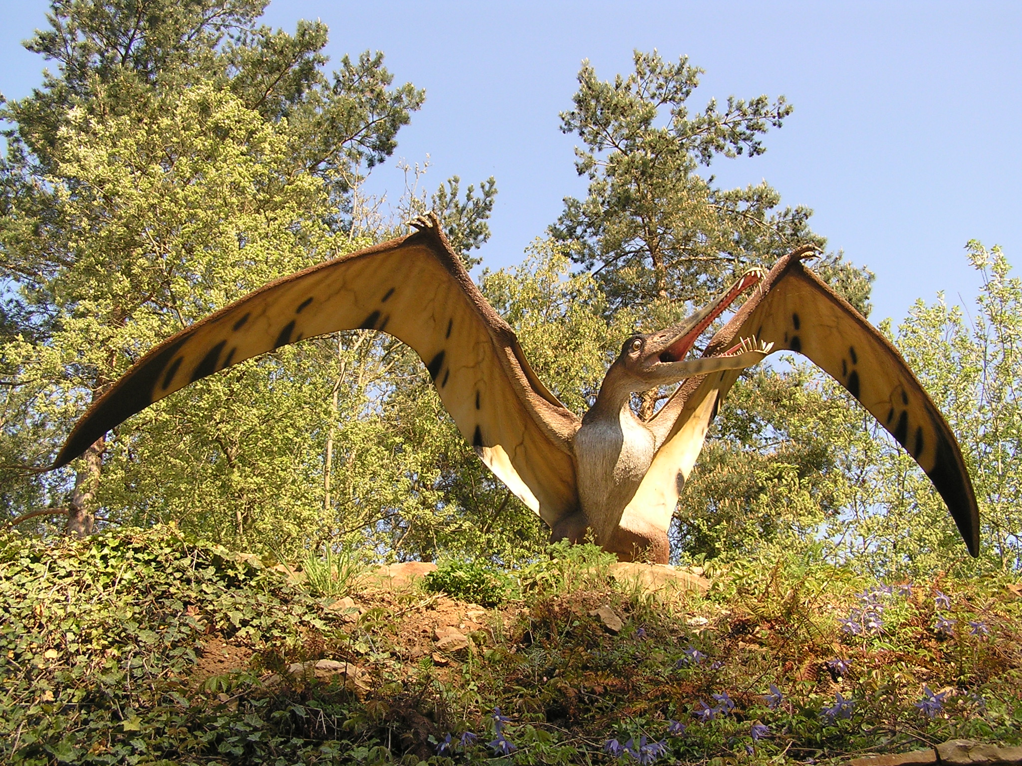 dinopark-flugsaurier