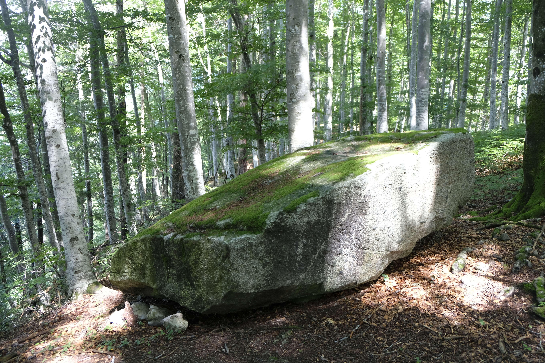 kraftort-stein-hondrichwald (3).JPG