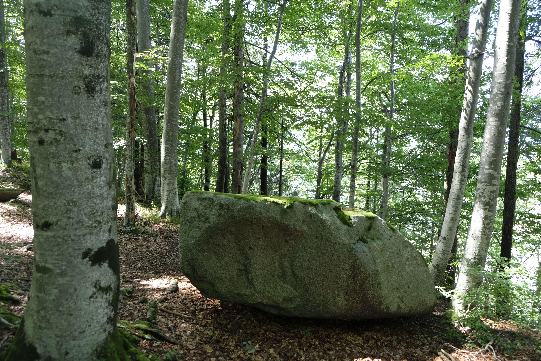kraftort-stein-hondrichwald (4).JPG