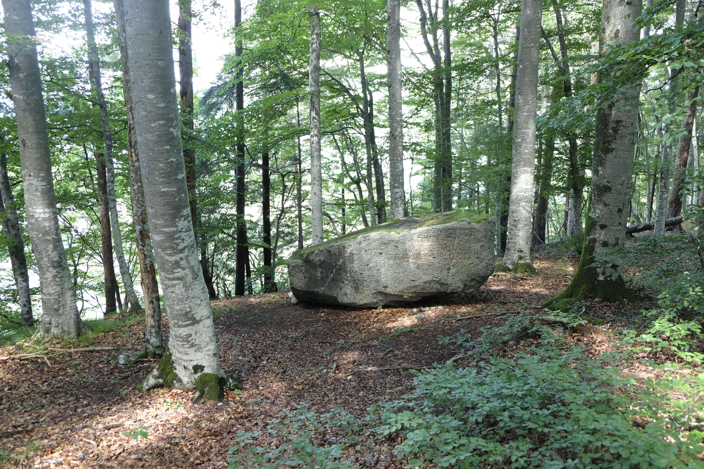 kraftort-stein-hondrichwald (5).JPG