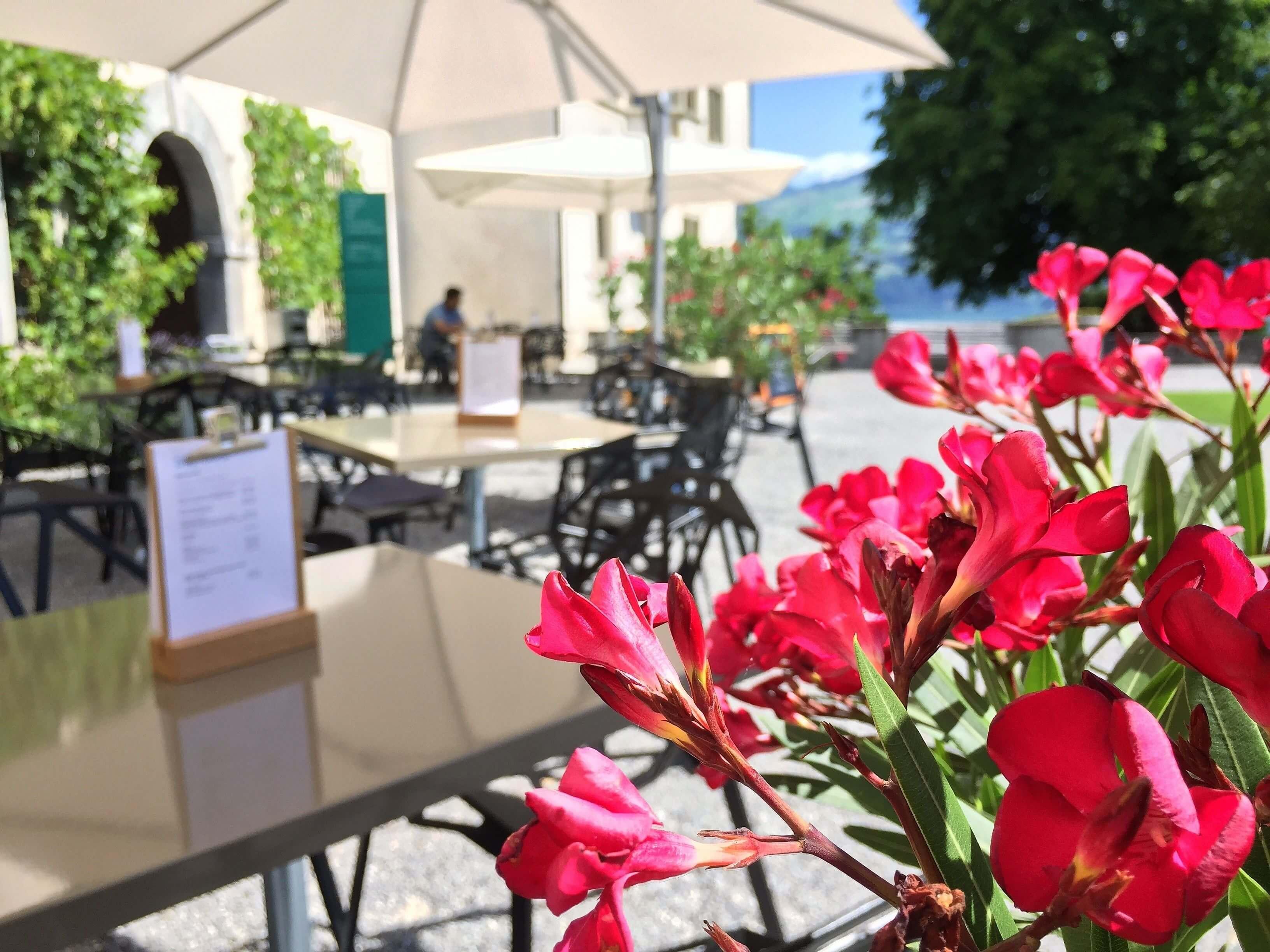 schloss-café-terrasse-blumen-spiez.jpeg