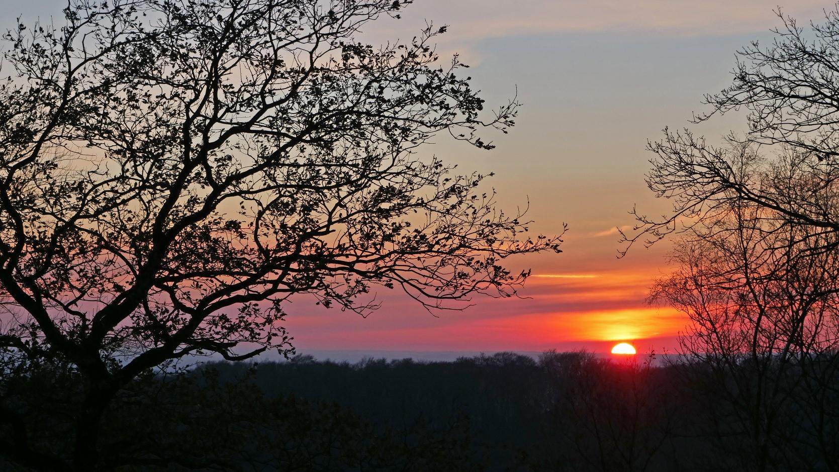 Sonnenuntergang auf dem Tönsberg in Oerlinghausen