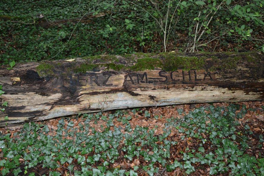 Landschaftspark in Rheder