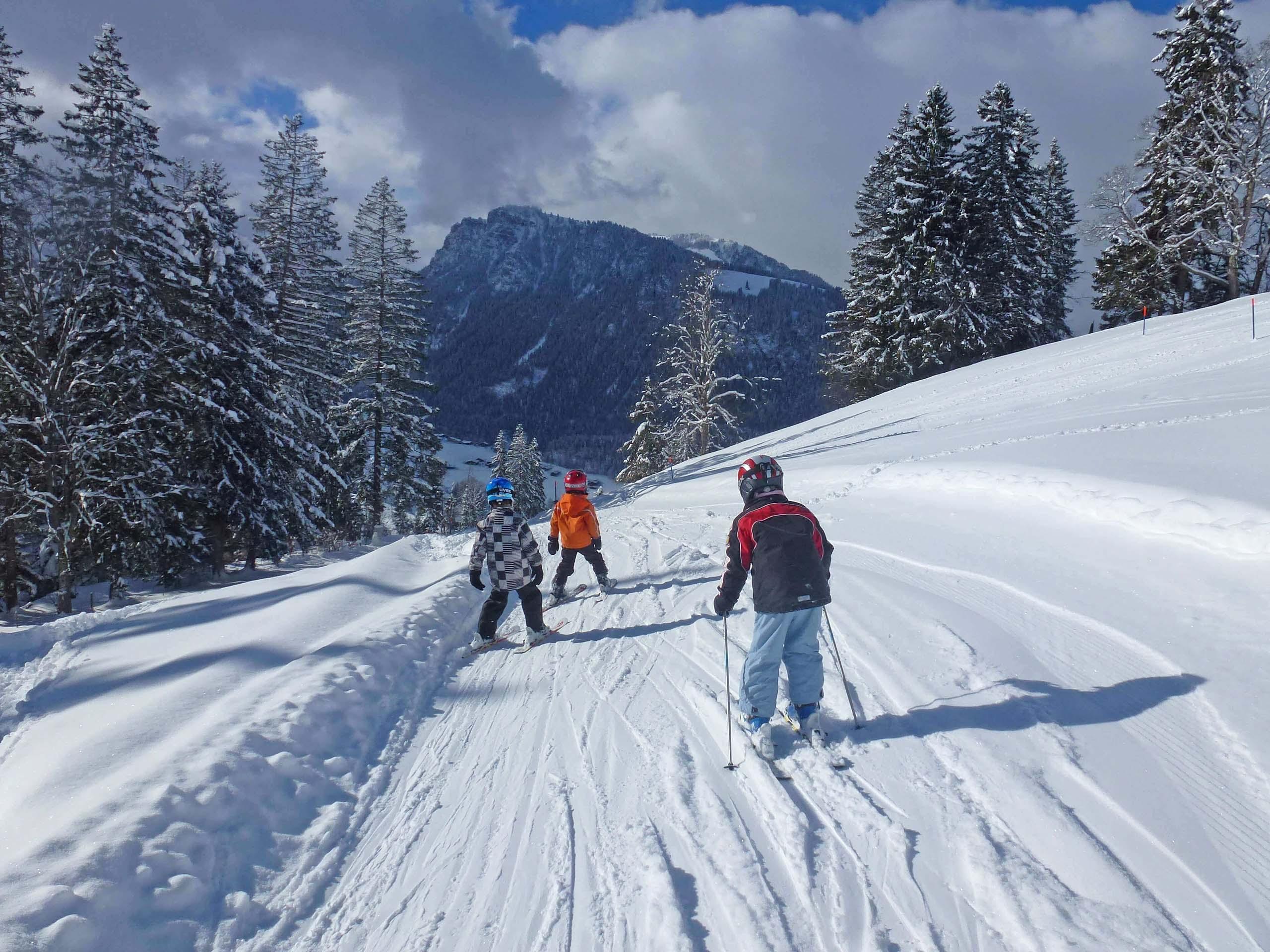 diemtigtal-springenboden-winter-skischule-kinder-verschneite-landschaft