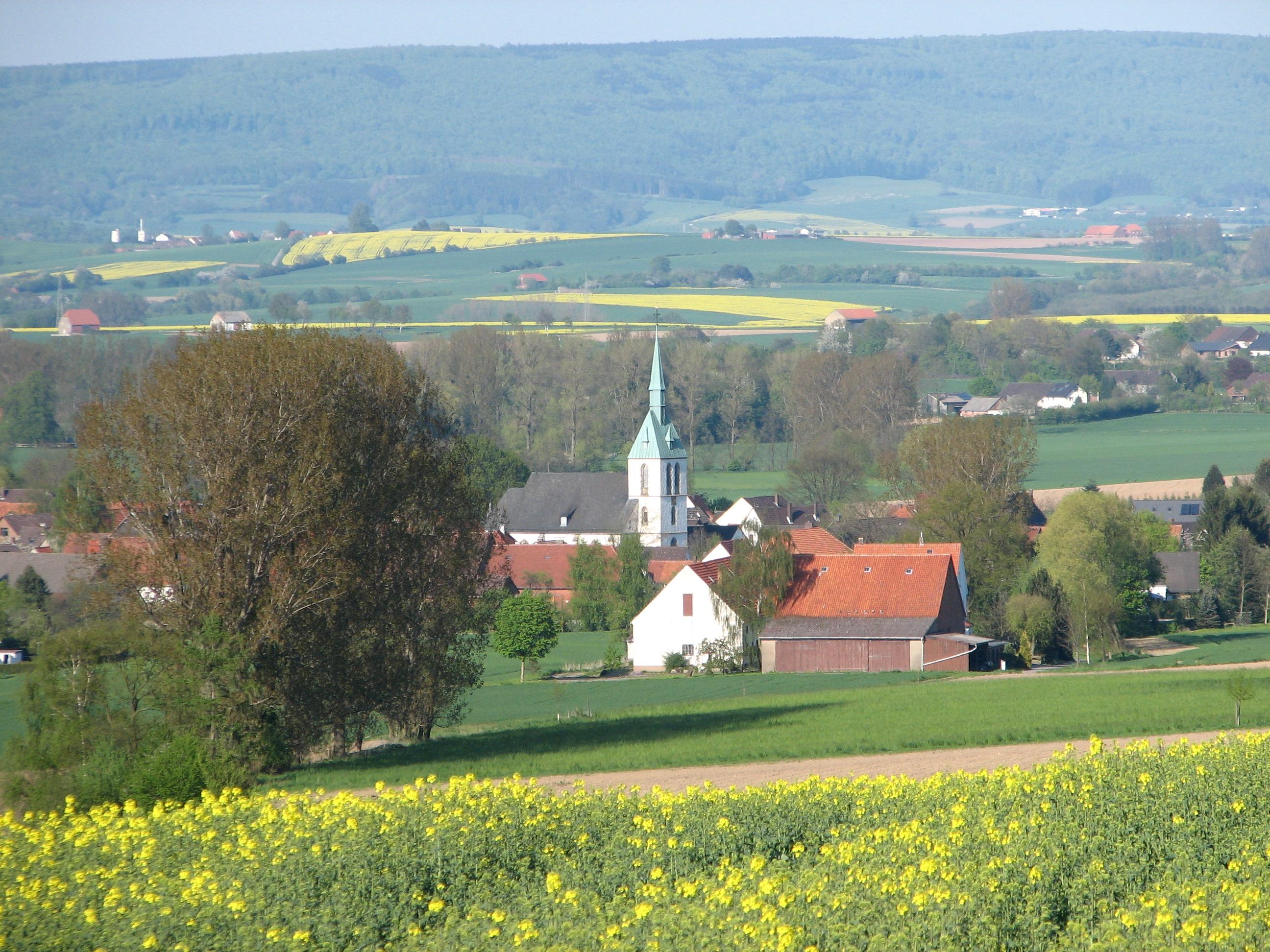 Blick auf Bergheim