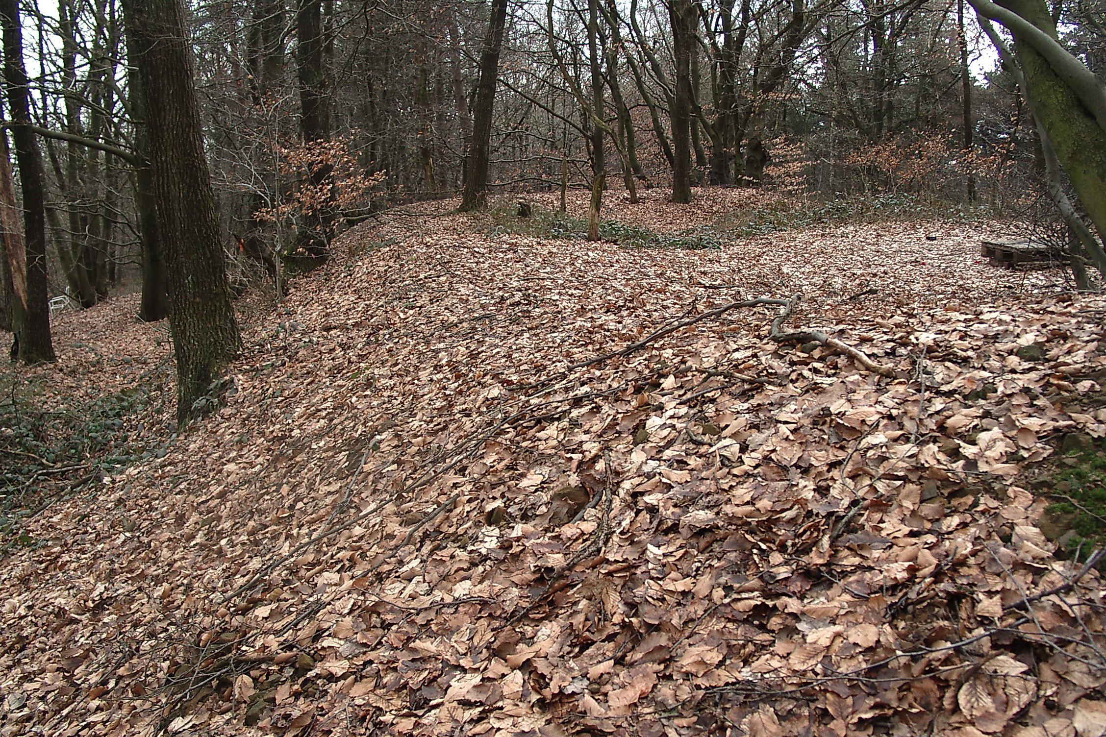 Der Verteidigungswall auf dem Bußberg, auch Schwedenschanze genannt, ist noch heute im Gelände zu erkennen (Foto: Heinz-Dieter Zutz).