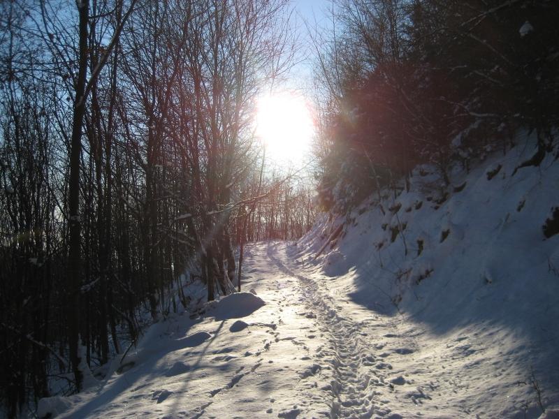 Am Winterberg - auch mit Schnee ein Erlebnis