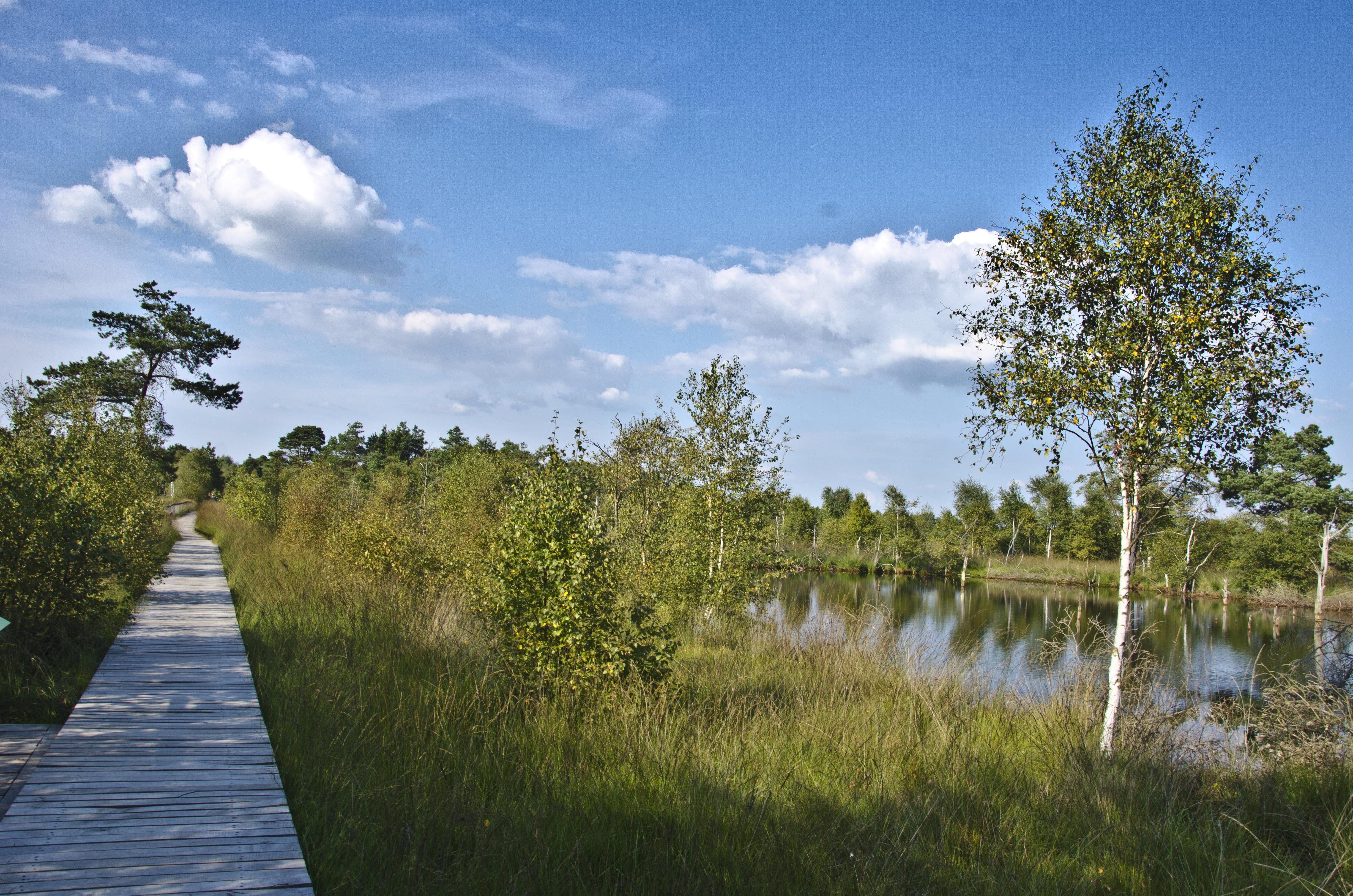 naturpark-lueneburger-heide-pietzmoor