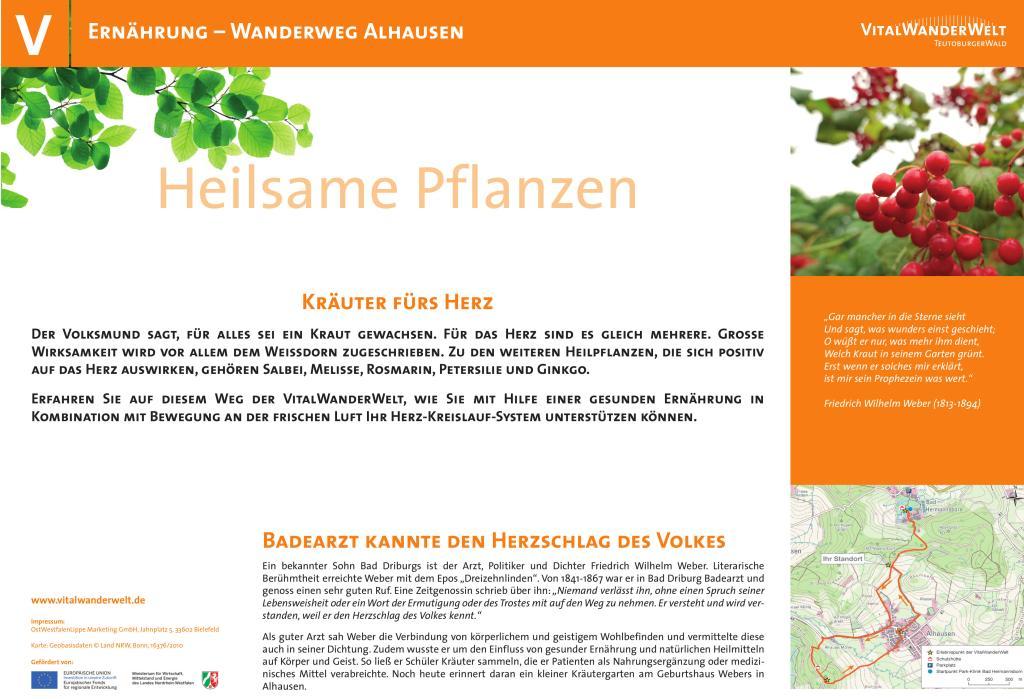 VitalWanderWelt Wanderweg Alhausen - Heilsame Pflanzen