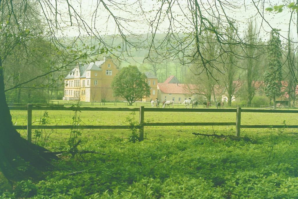 Schloss Crollage