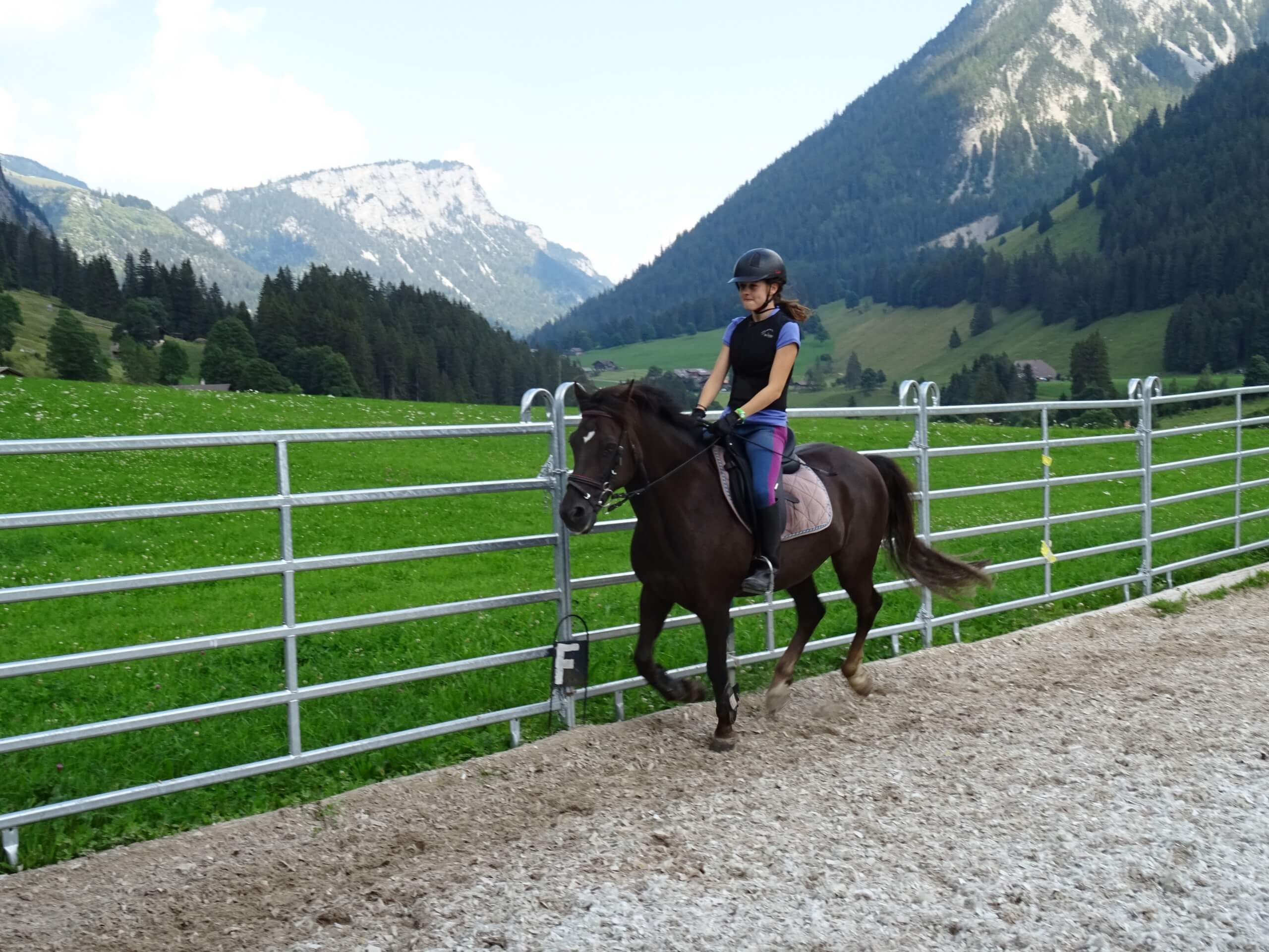 reithof-lanzelot-pferde-reiten-sommer-reitplatz