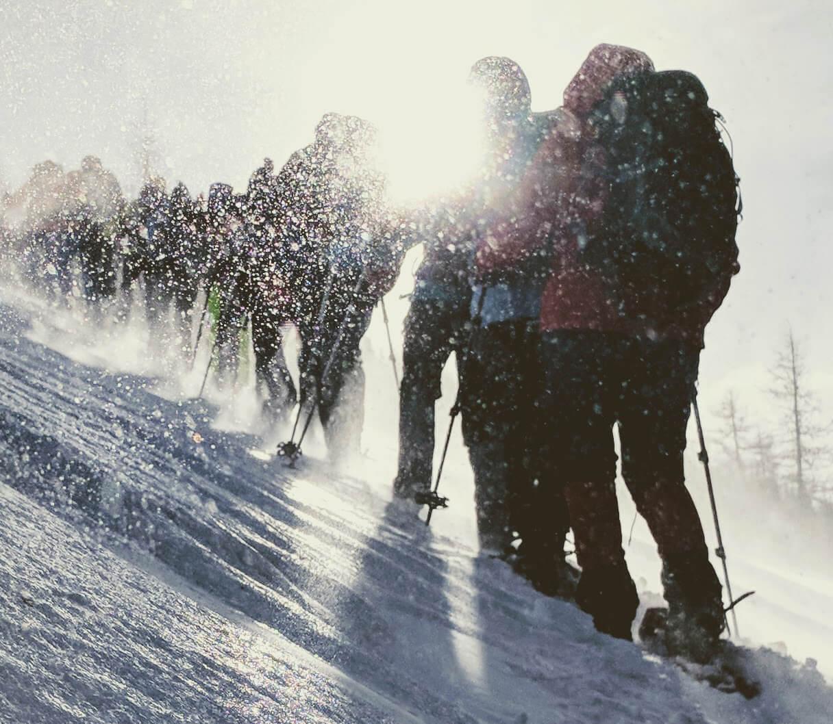 Schneeschuhwandergruppe unterwegs im Neuschnee