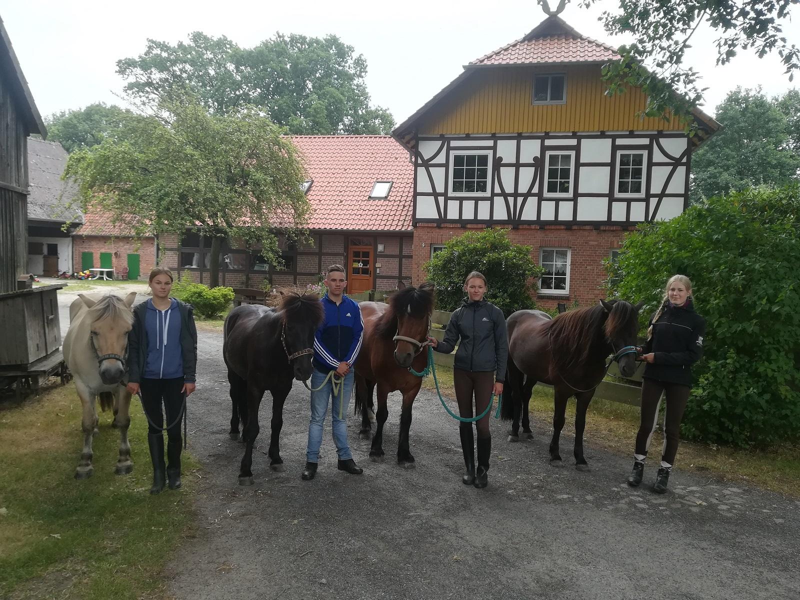 Dennhornshof mit Pferden