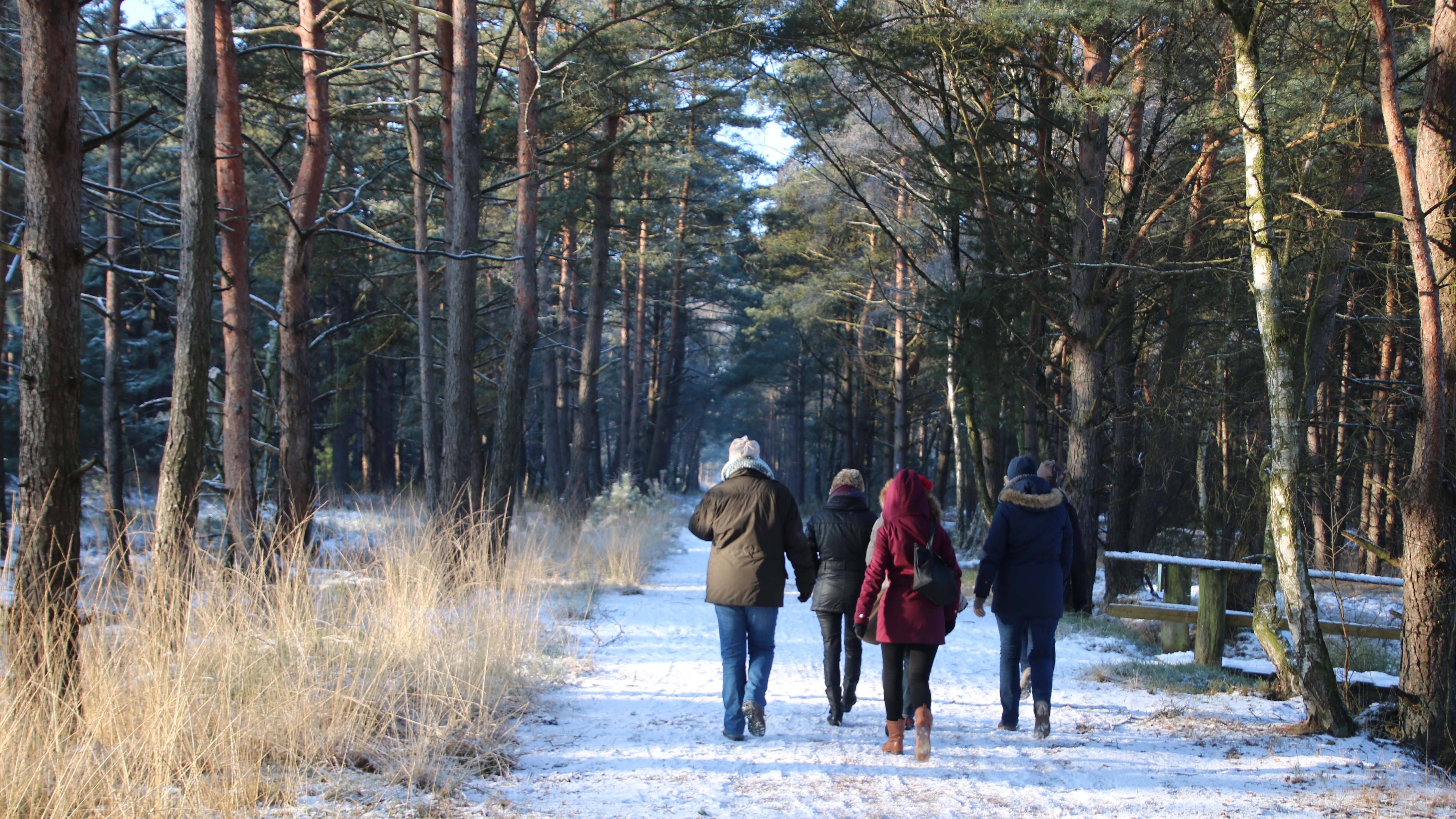 Winterwandern auf dem NORDPFAD Dör´t Moor