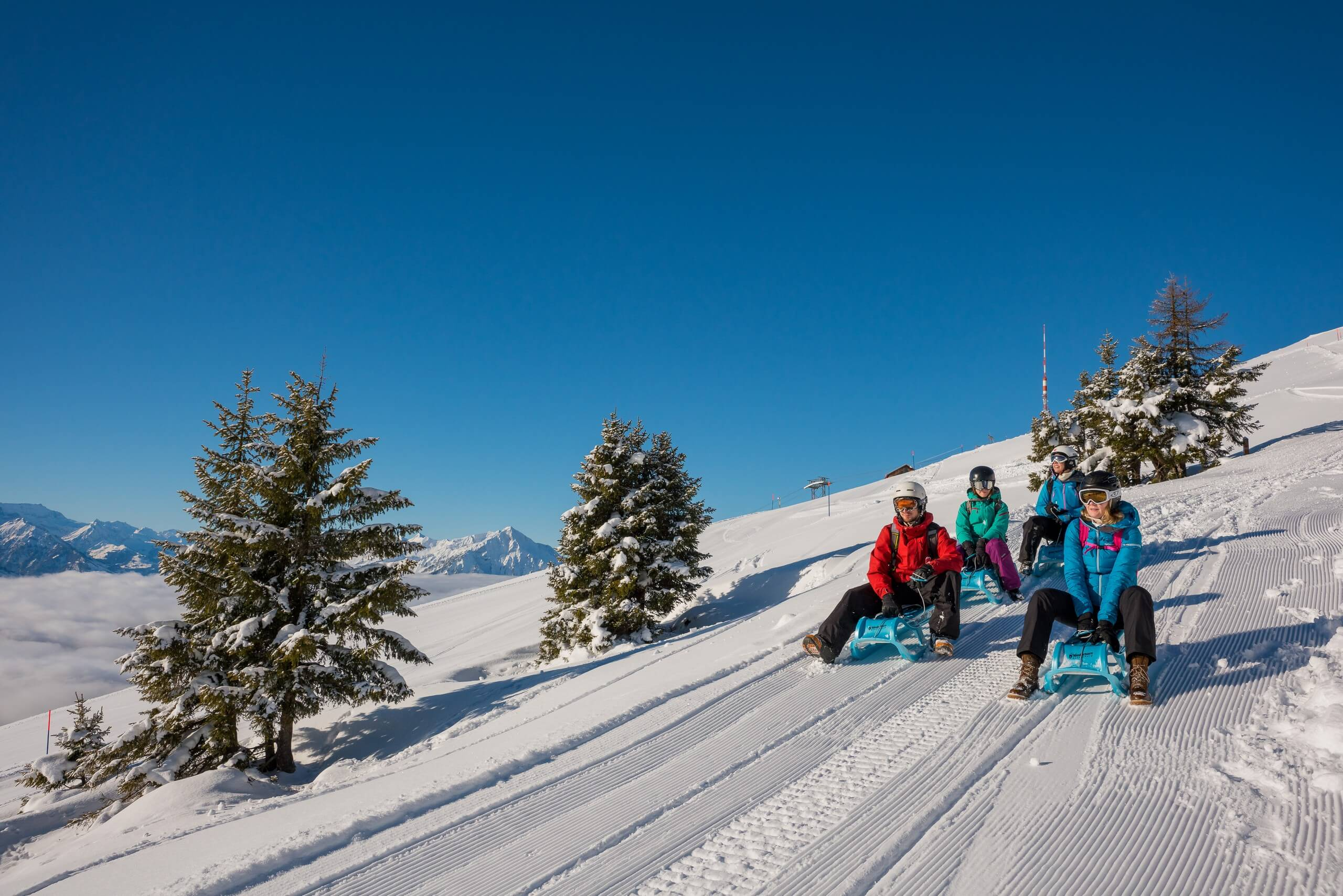 niederhorn-schlitteln-winter-nebelmeer-berge-piste-tannen-gruppe