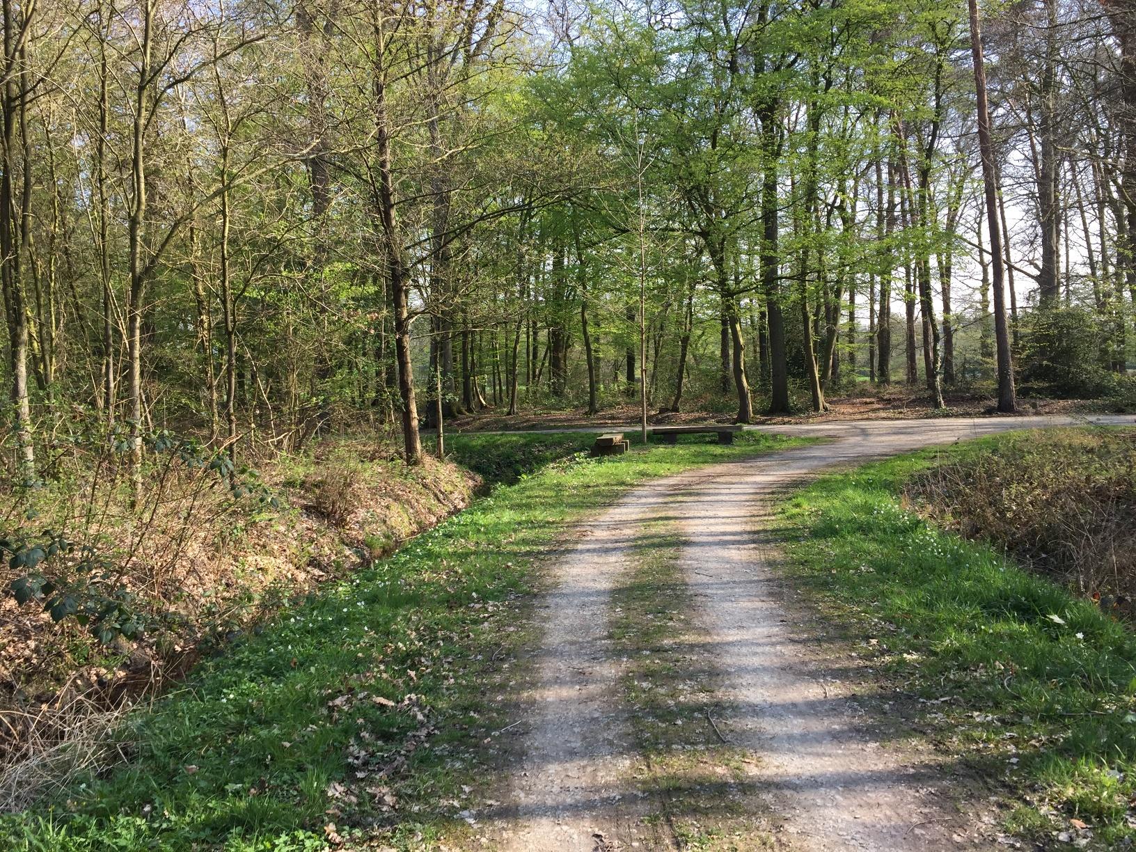 Der Friedwald
