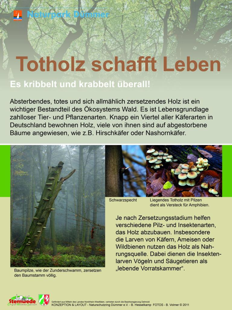 Infotafel Totholz