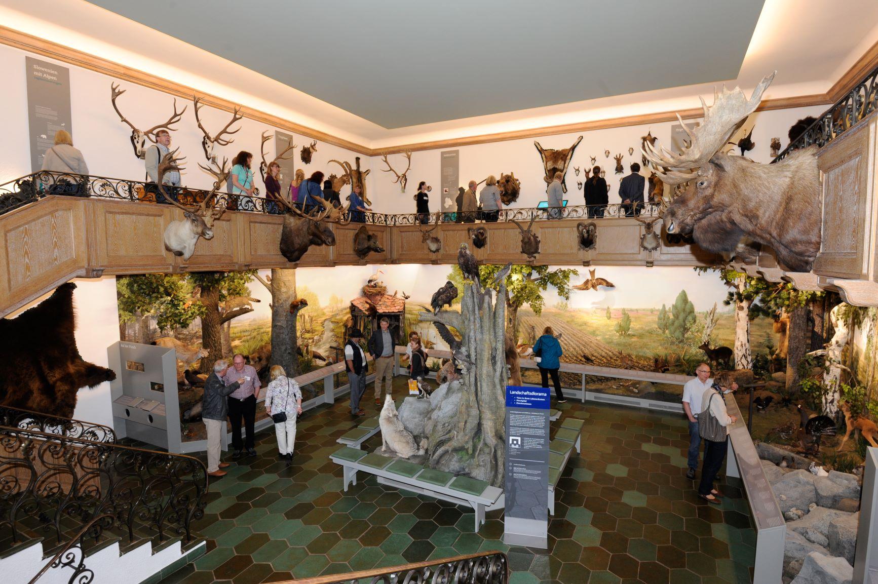 Ausstellung im Jagdmuseum