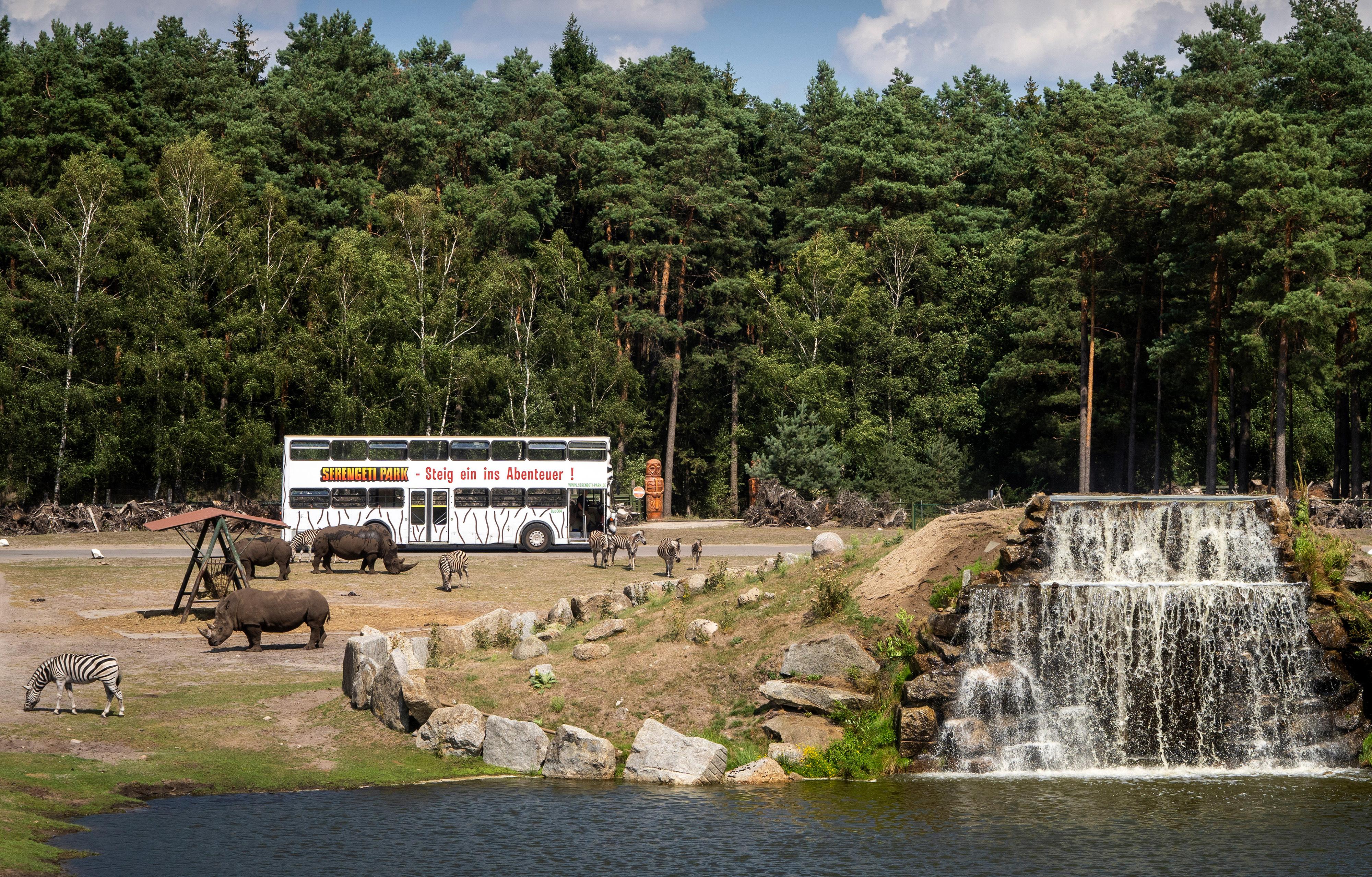 serengeti-safari-bustour