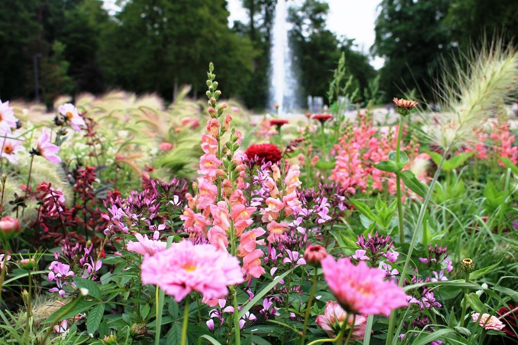 Blumenpracht & Waldidylle im Gartenschau-Gelände Bad Lippspringe