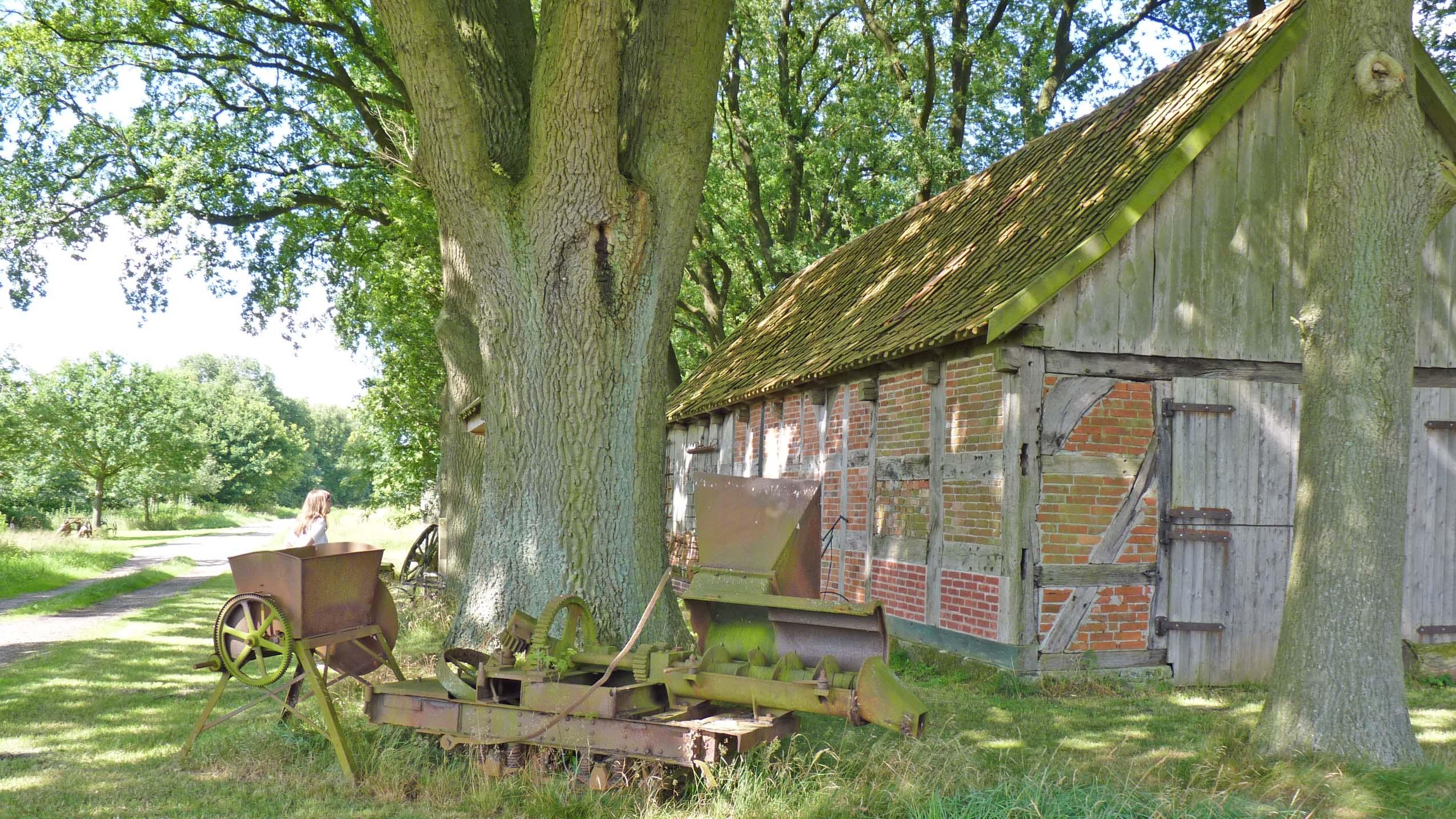 Der Schafstall in Unterstedt zeigt viele alte landwirtschaftliche Geräte
