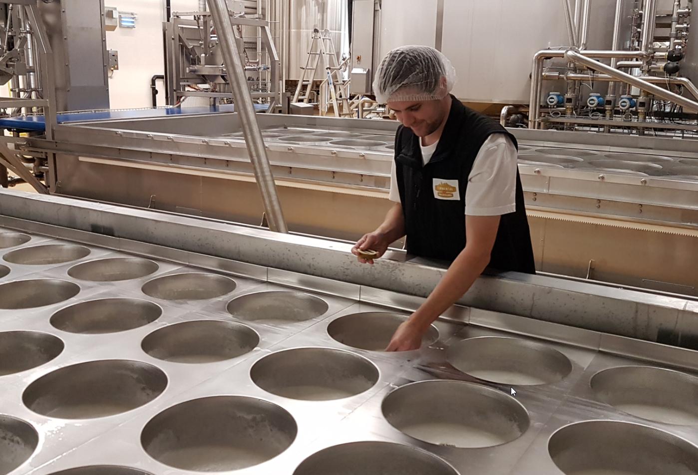 Einblick in die Käseproduktion