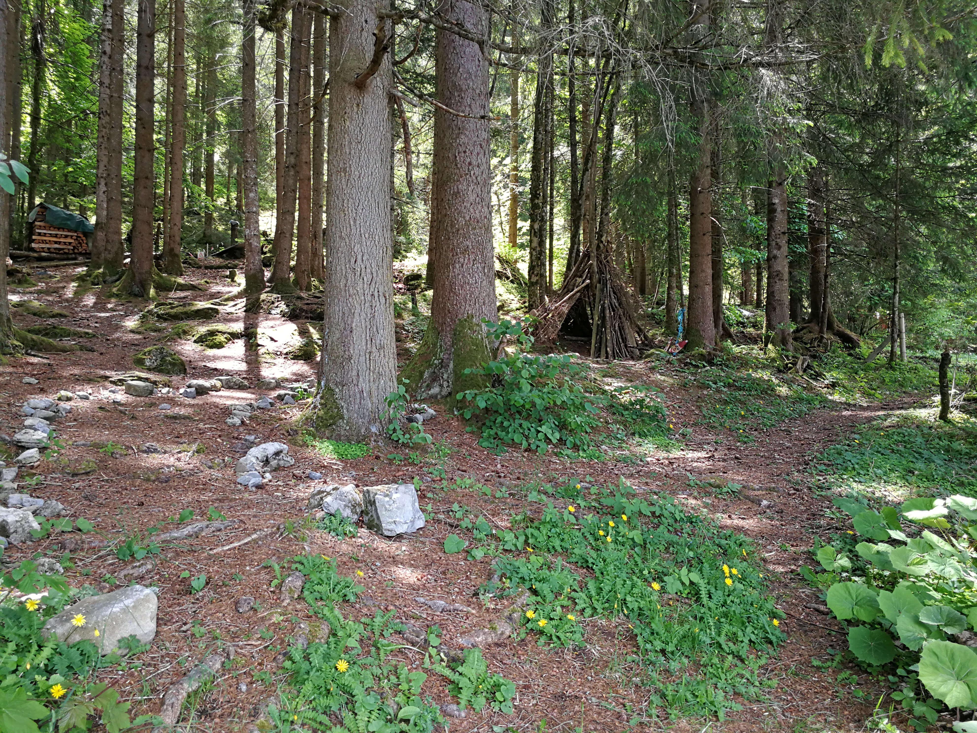 Direkt am Waldrand für unvergessliche Abenteuer