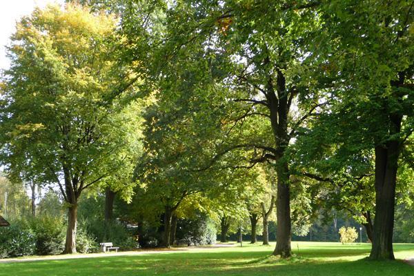 Gellershagenpark