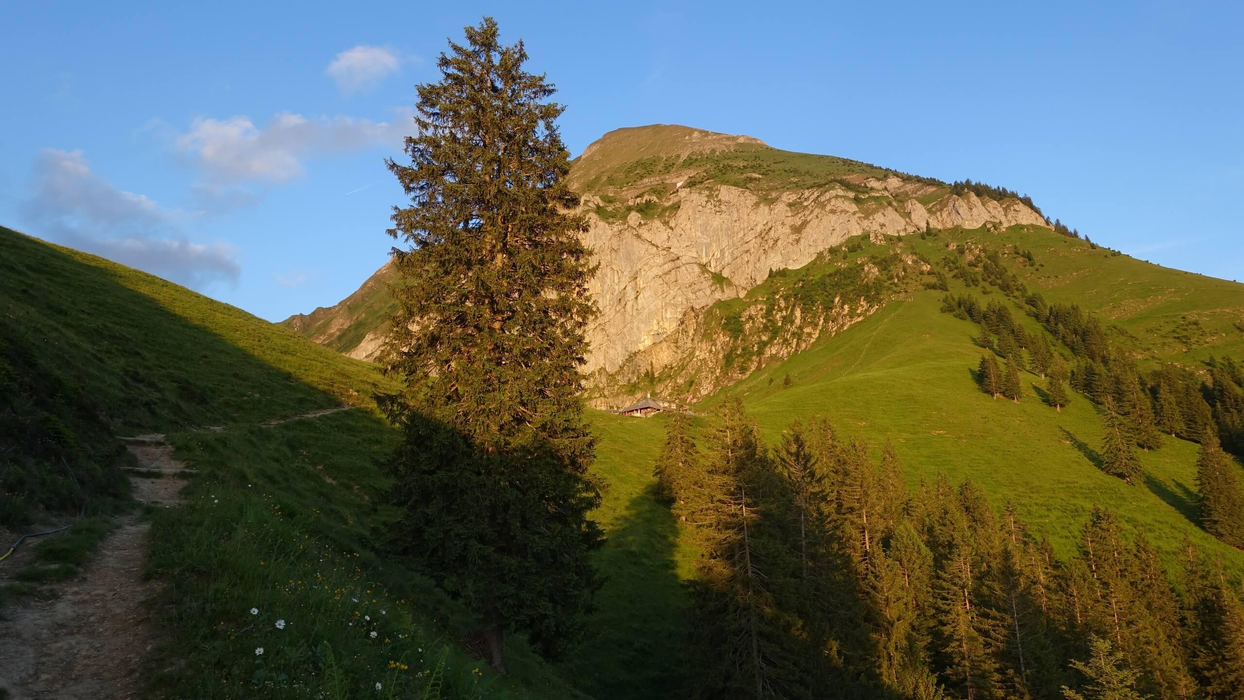 aeschi-alp-brunni-sommer-sonnenschein