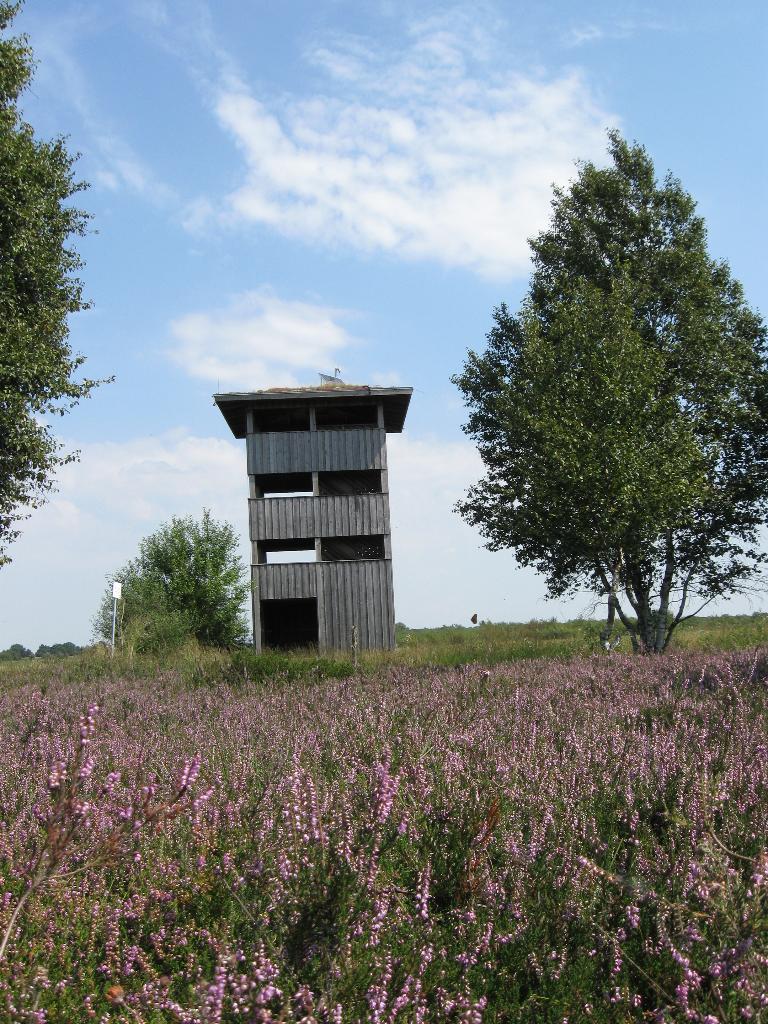 Turm in der Heide in Wagenfeld