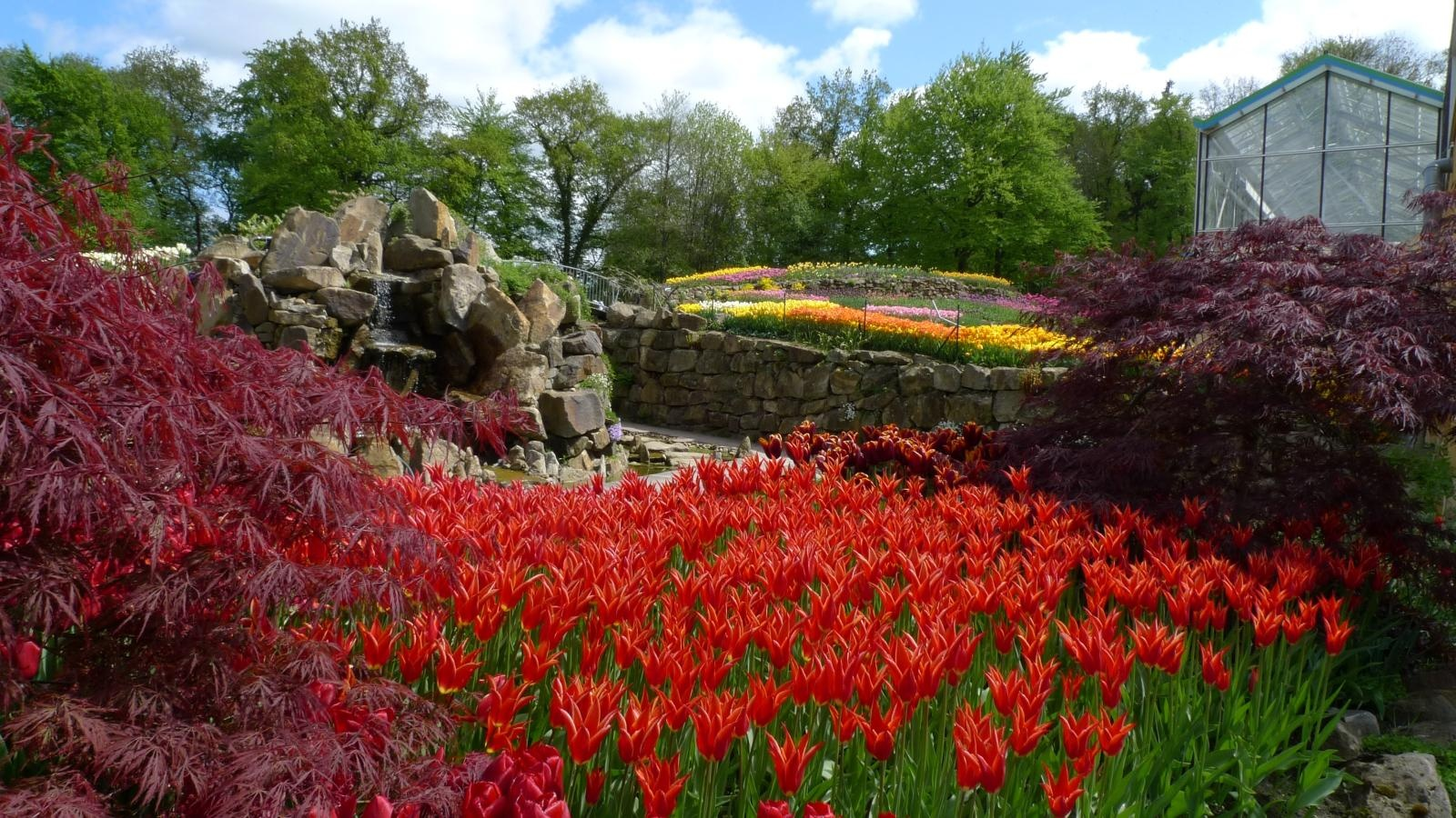 Frühling bei NaturaGart Ibbenbüren