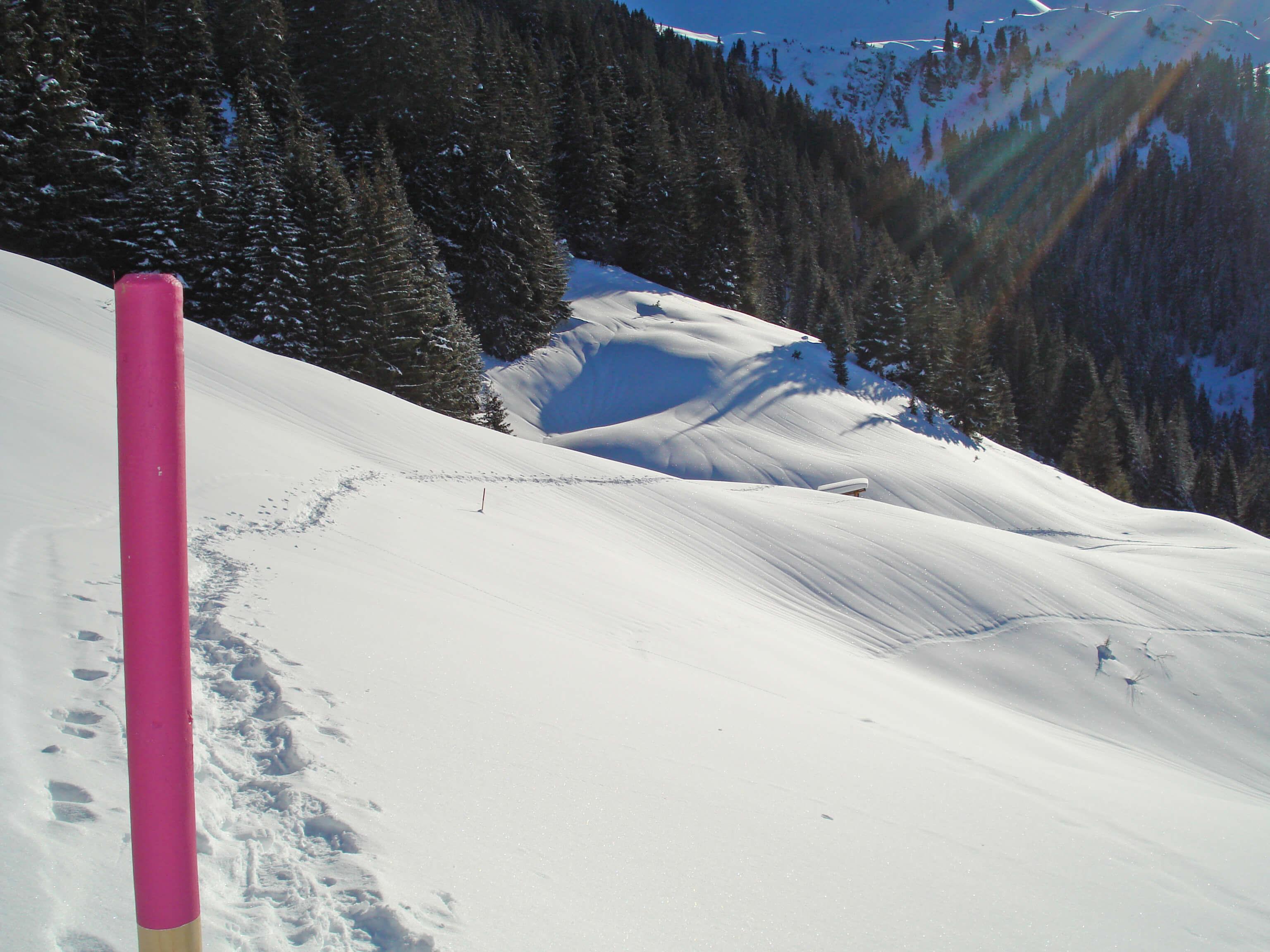 Schneeschuhtrail Grimmialp in wunderbarer Winterlandschaft