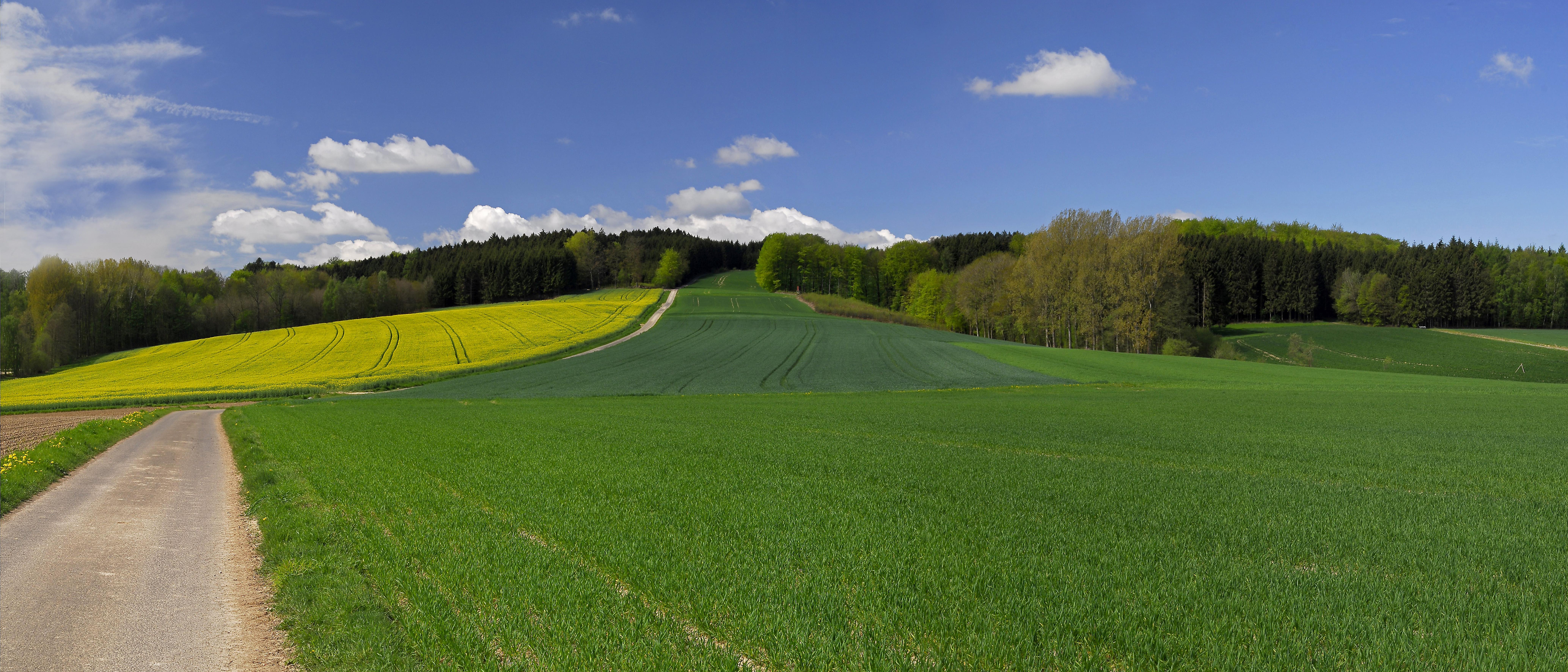 Landschaft bei Blomberg