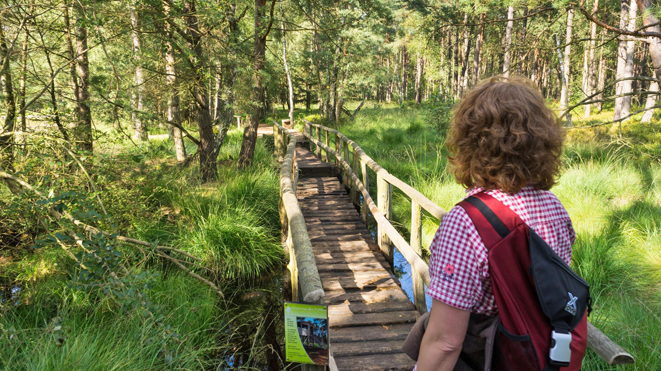 Der Schwingrasen bzw. die Wackelbrücke - betreten auf eigene Gefahr - macht voll Spaß