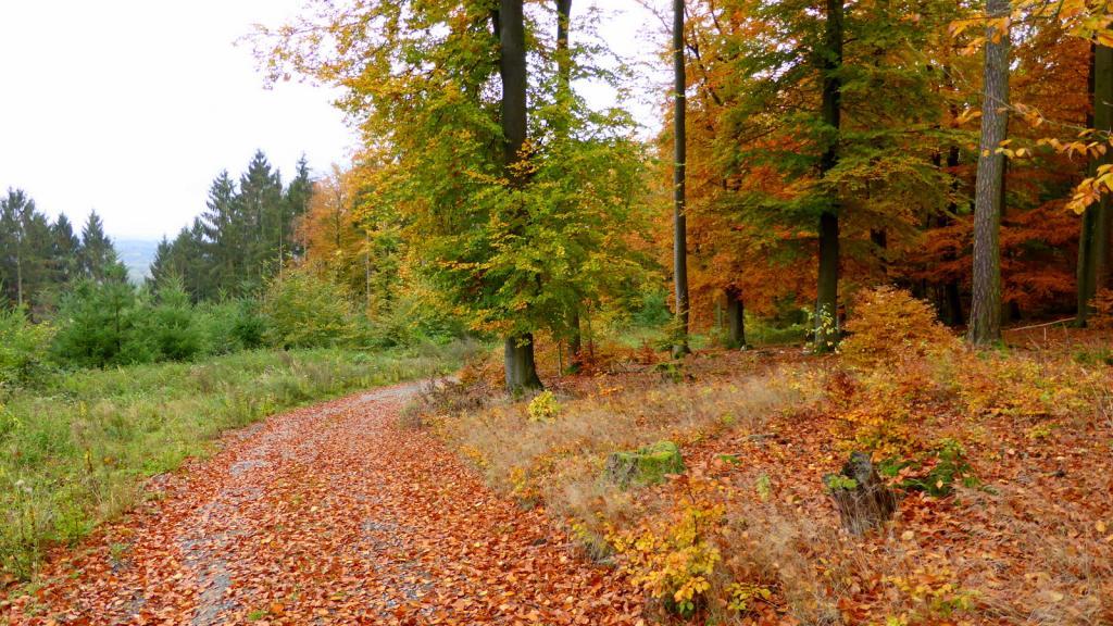 Blankenau_am_Bierenberg