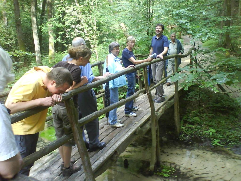 Brücke über den Furlbach