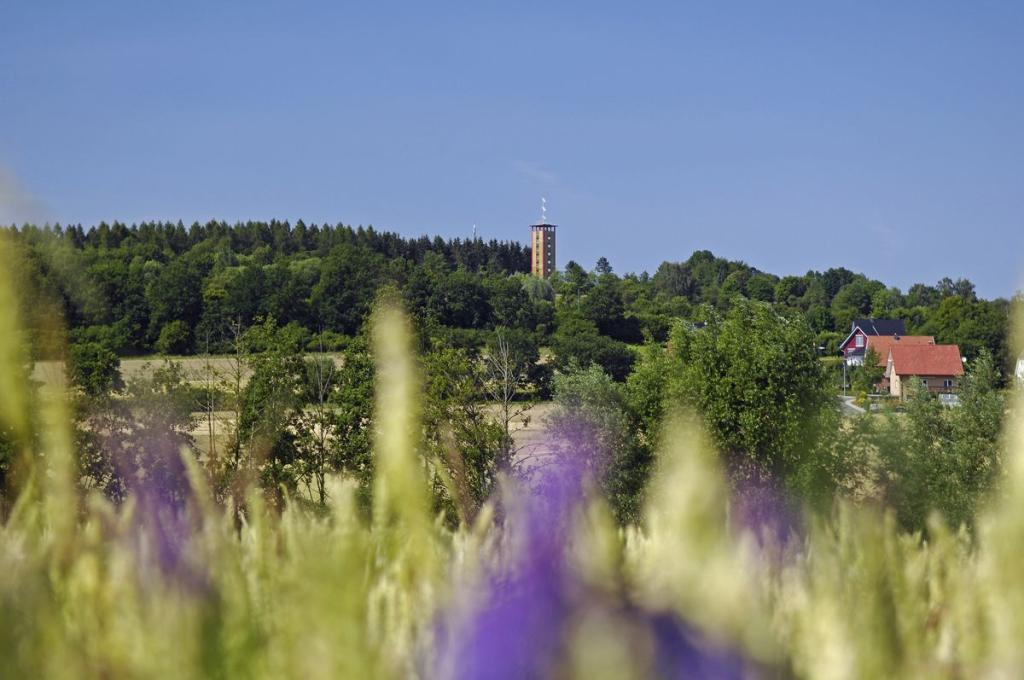 Lattebergturm