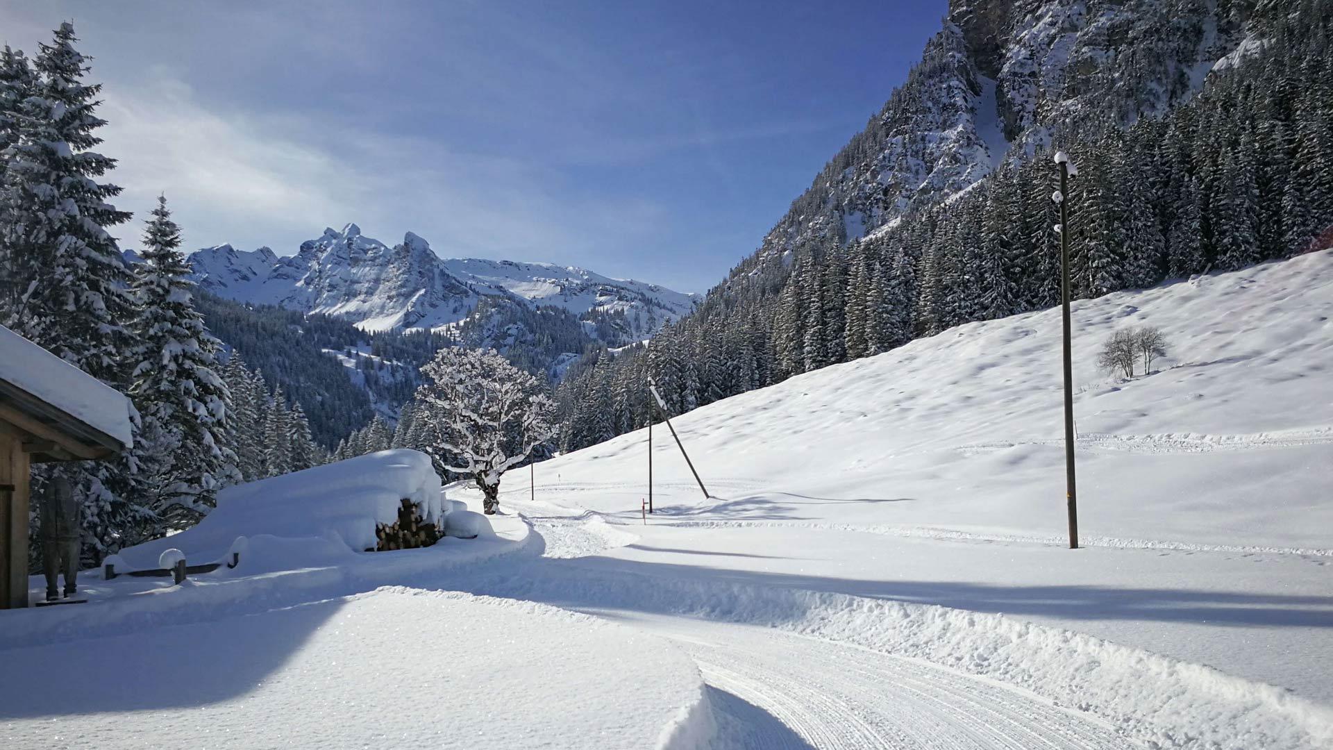naturpark-diemtigtal-winter-langlauf-loipe-grimmimutz-blick-spillgerte
