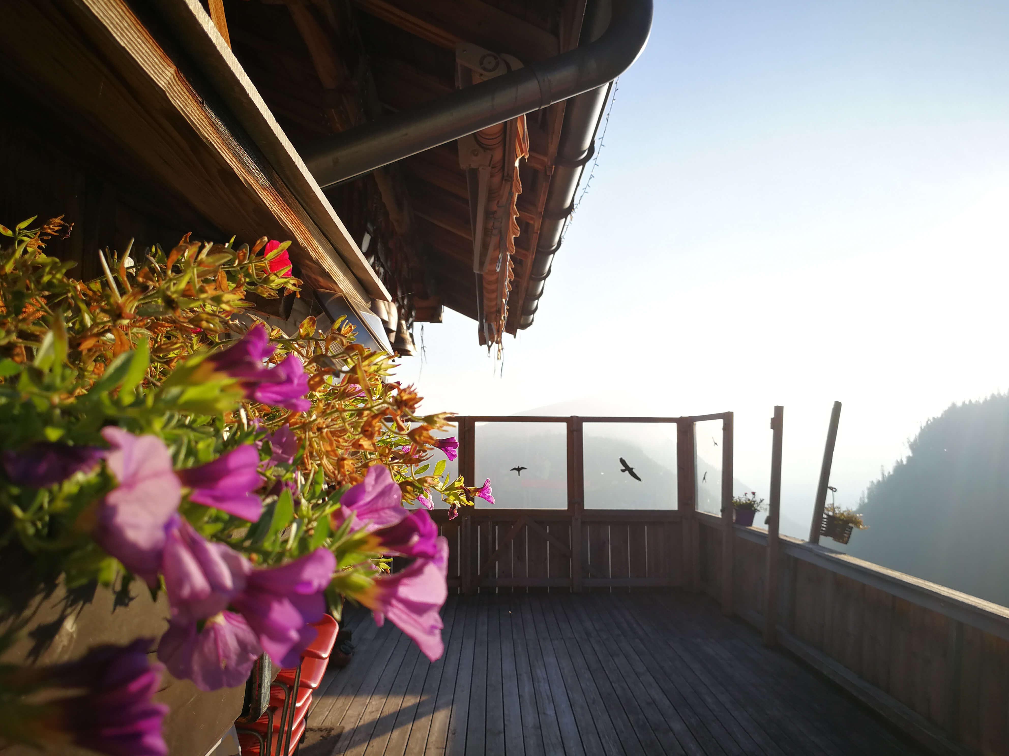 Sennhütte Menigwald Terrasse Blumen Balkon
