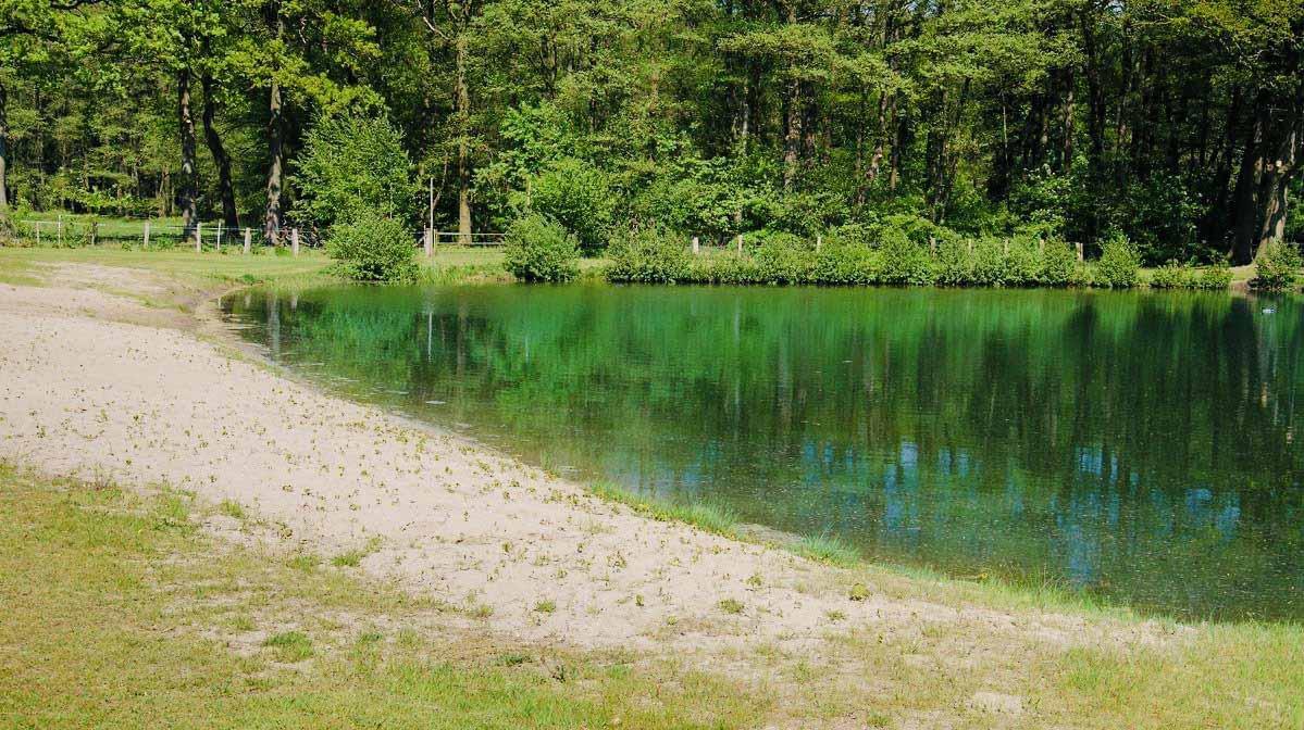 celle-campingplatz-alvern-badesee