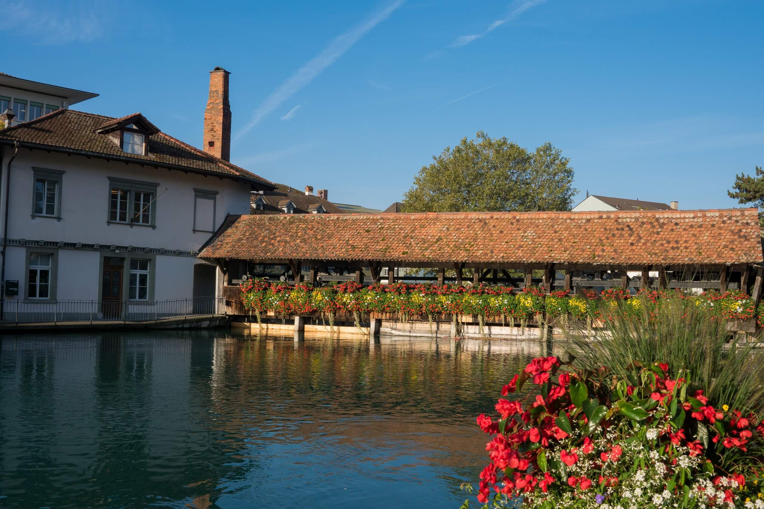 thun-aare-sommer-untere-schleuse-alte-oele