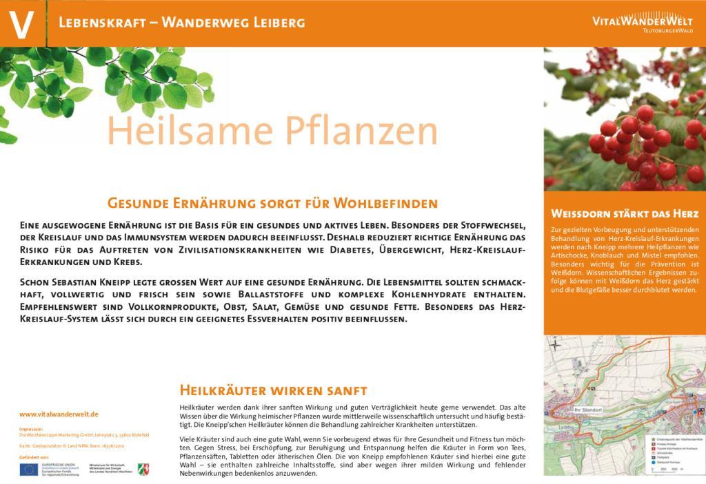 VitalWanderWelt - Wanderweg Leiberg - Heilsame Pflanzen