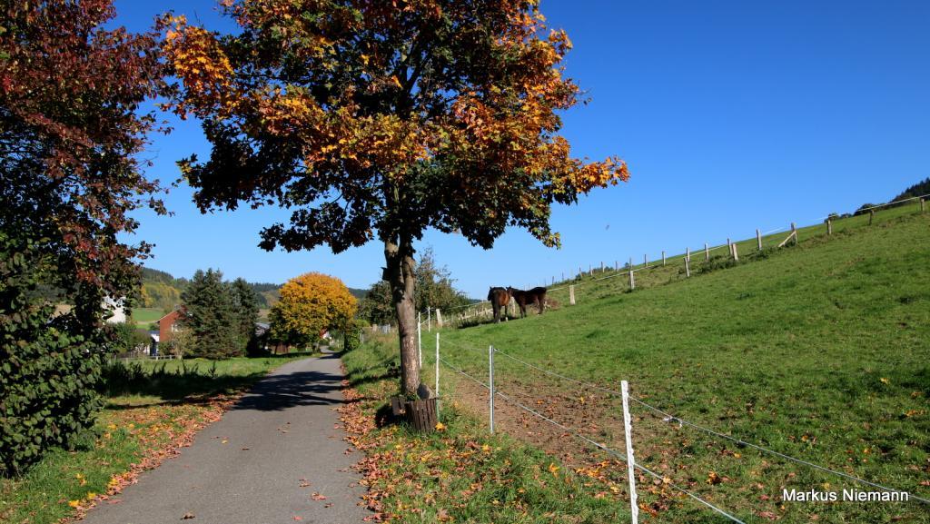 Weserhöhen_R1_Ortsausgang_Ovenhausen