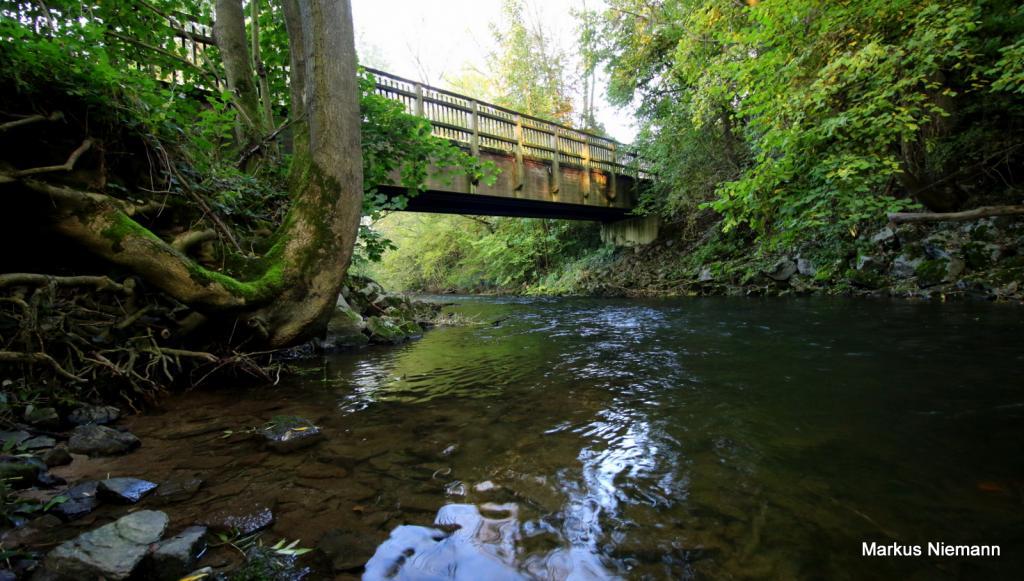 Weserhöhen_Nethebrücke_zwischen_Amelunxen_und_Ottbergen