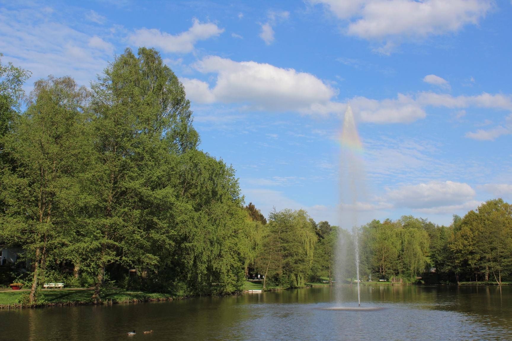 Springbrunnen im See